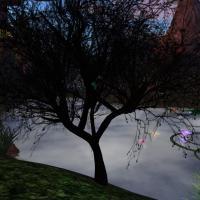 Tree of Shadow